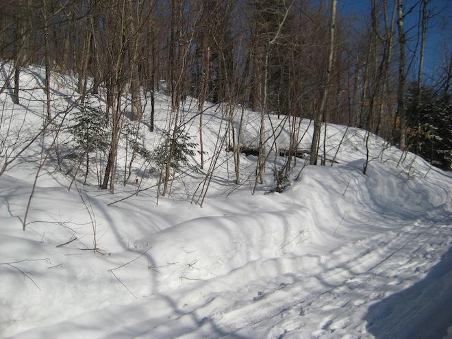 Voyage au Québec_Février 2008 111