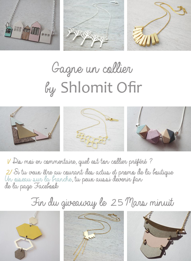 giveaway-shlomit-ofir