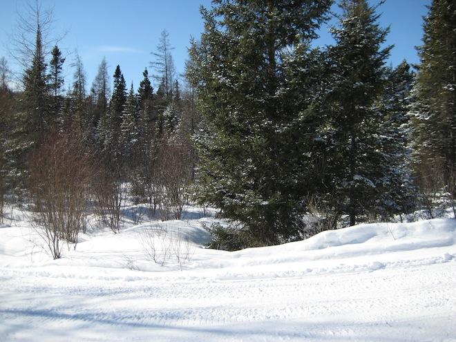 Voyage au Québec_Février 2008 137