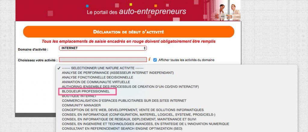 microentrepreneur-blogueur